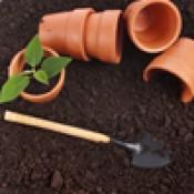 Для комнатных растений  (6)