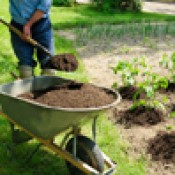 Для сада и огорода (13)