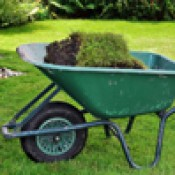 Тачки садовые (2)