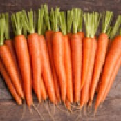 Морковь и свекла (2)