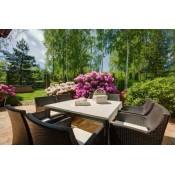 Садовая мебель (8)